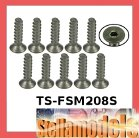 TS-FSM208S M2 x 8 Titanium Flat Head Hex Socket - Self Tapping (10 Pcs)