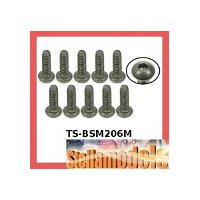 TS-BSM206M M2 x 6 Titanium Button Head Hex Socket - Machine (10 Pcs)